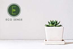 eco-sense-portfolio